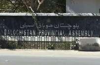 بلوچستان سے سینٹ کے امیدواروں کو بڑی بڑی رقم خرچ کرنی ہوگی، ایک ووٹ ..