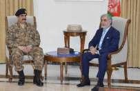 آرمی چیف جنرل راحیل شریف کی افغان صدر اور چیف ایگزیکٹو سے کابل میں ملاقات،باہمی ..
