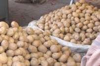 کرکٹ جنون ، مرید کے کے سبزی فروش نے پانچ ہزار کے آلو فری تقسیم کر دیئے