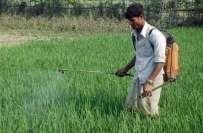 ضلعی انتظامیہ کے محکمہ زراعت شہر کی ما رکیٹوں میں کھاد اور کیڑے مار ..