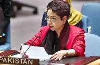 پاکستان نے اقوام متحدہ کی سلامتی کونسل سے فلسطین کا مسئلہ حل کرنے کا ..
