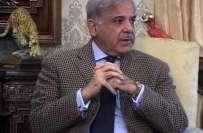 وزیراعلیٰ پنجاب شہباز شریف کی جوش خطابت میں زبان پھسل گئی