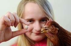 مرغی کا سب سے چھوٹا انڈا۔ ورلڈ ریکارڈ