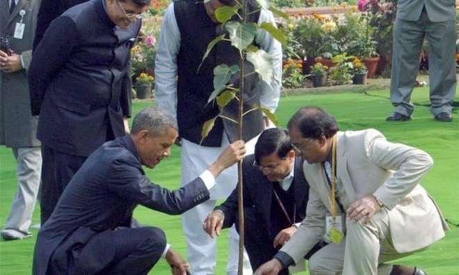 اوباما کا لگایا پودا مرجھا گیا،سرکاری حکام کی نیندیں حرام ہوگئیں