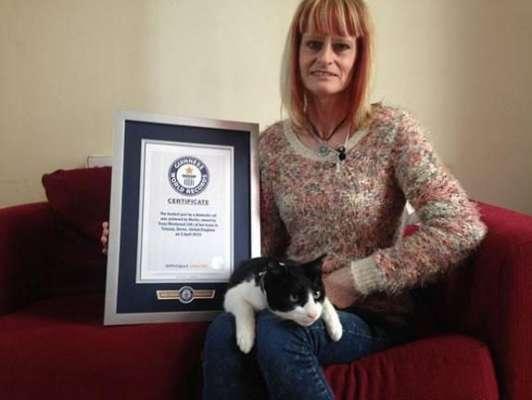 گینیز ورلڈ ریکارڈ برطانوی بلی کے نام