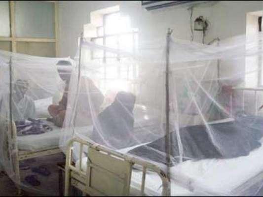 پنجاب میں ڈینگی کے مریضوں کی تعداد میں روز بروز اضافہ ہونے لگا ' مزید ..