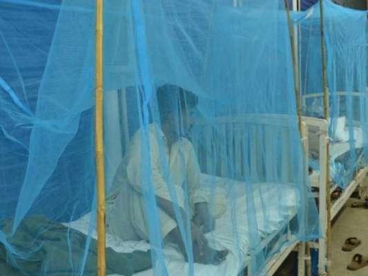 پنجاب ، خیبرپختونخوا کے ہسپتال ڈینگی مریضوں سے بھر گئے ، لاہور میں ..