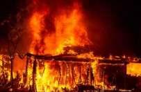 امریکہ کے جنوبی علاقوں میں کئی طاقتور بگولوں کی زد میں آ کر3 افراد ہلاک ..