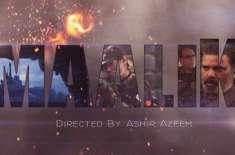 فلم مالک میں پاکستان کو لاقانونیت والی ریاست بنا کر پیش کیا گیا ہے،