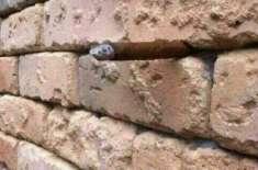 دیوار میں کیا ہے؟ انٹرنیٹ صارفین ایک بار پھر پریشان