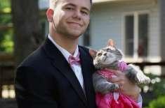 نوجوان کو رقص کے لیے کوئی ساتھی نہ ملا تو وہ بلی ہی لے آیا