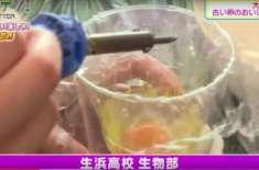 طالب علموں نے انڈہ توڑا،   زردی اور سفیدی  باہر نکالی اور زردی اور سفیدی ..