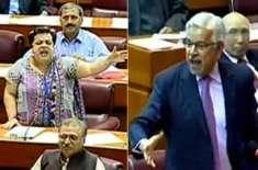 پارلیمنٹ میں نامناسب الفاظ کے استعمال پر غیر مشروط معافی مانگی، الفاظ ..