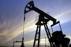 پاکستان میں عنقریب دنیا کا تیل کا پانچواں بڑا ذخیرہ برآمد ہونے کا امکان