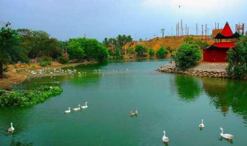 کراچی، سفاری پارک کے قریب ڈاکو ..