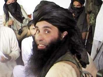 افغان صوبے ننگرہار میں ڈرون حملے میں کالعدم تحریک ..