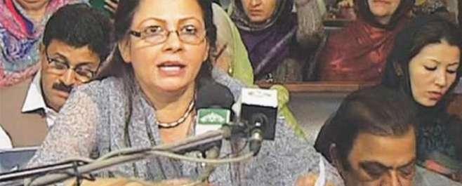 پنجاب کا393ارب روپے خسارے کا بجٹ