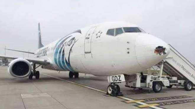 برطانیہ میں مصر کی فضائی کمپنی کے طیارے سے ایک بڑا پرندہ ٹکرا گیا