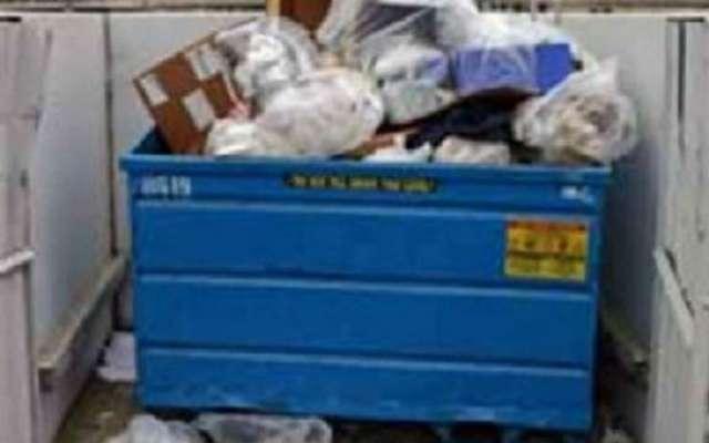 کچرا جمع کرنے والے نے کچرے سے لاکھوں ڈالر کا خزانہ جمع کر لیا