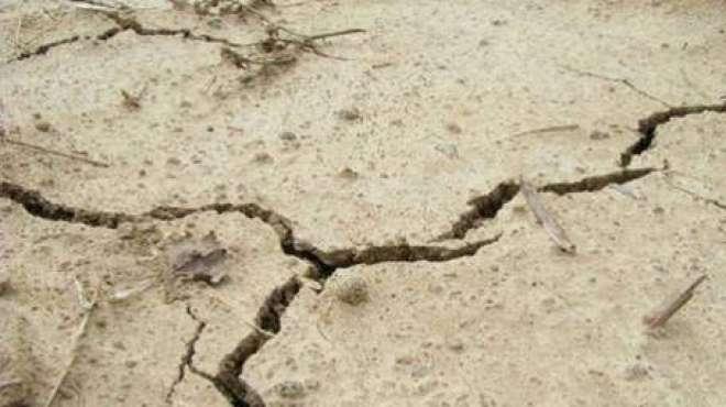 بھارتی ریاست گجرات میں زلزلے کے جھٹکے محسوس کیے گئے ۔ بھارتی میڈیا