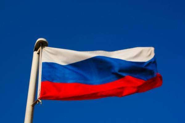 جاسوسی کیلئے ڈولفن درکار ہیں، روس نے ٹینڈر شائع کر دیا