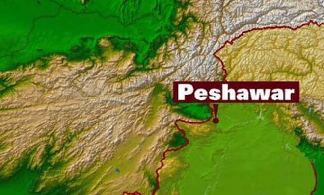 پشاور میں ہوٹل کے کمرے کی تلاشی لینے پر مشکوک شخص نے پولیس پر فائرنگ ..