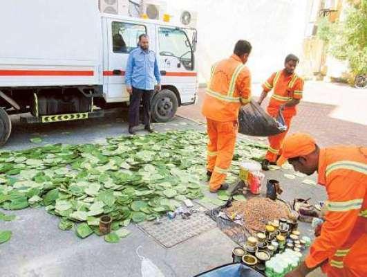 """دبئی:میونسپیلٹی حکام نے 101کلوگرام """" پان """" ضبط کر لیئے"""