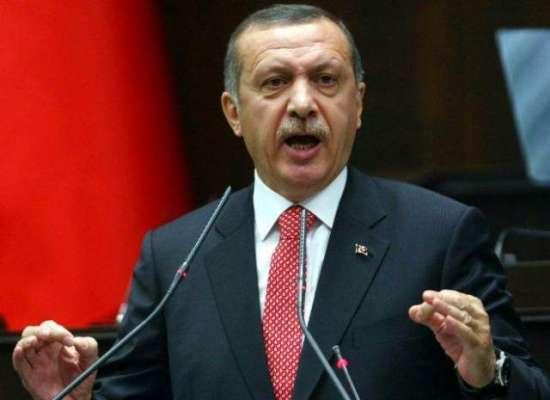 دہشتگردوں کواسلحہ مغرب سے مل رہاہے۔ترک صدر
