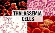 تھیلیسیمیا کیئرسینٹر کی تکمیل کو جلد یقینی بنایا جائے،ڈی پی او