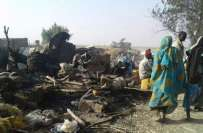 نائیجیریا، جیٹ طیارے کی بوکو حرام کے خلاف کاروائی کے دوران غلطی سے ..