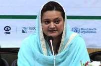 ملک کی پہلی فلم اور ثقافت پالیسی کی کابینہ سے منظوری تاریخی اقدام ہے، ..