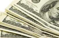 روپے کے مقابلے ڈالر کی قدر مستحکم