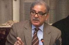 تحریک انصاف کا  شہباز شریف کے خلاف نااہلی ریفرنس دائر کرنے کا فیصلہ