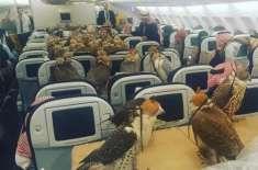 سعودی شہزادے نے 80 عقابوں کے لیے فرسٹ کلاس کے ٹکٹ خرید لیے