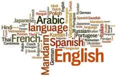 دنیا میں  سب سے زیادہ زبانیں کس ملک میں بولی جاتی ہیں؟