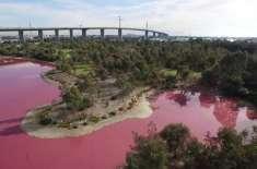 آسٹریلوی پارک کی جھیل کا پانی قدرتی طور پر گلابی ہوگیا۔