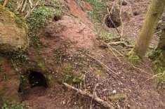 کسی کو امید نہ تھی کہ خرگوش کا سوراخ خفیہ نائٹ ٹمپلر غاروں کے نیٹ ورک ..