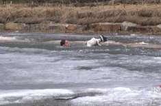 منجمد تالاب میں پھنسے کتے کو بچانے کے لیے نوجوان نے تالاب میں چھلانگ ..