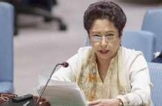 بھارت کے غیر ذمہ دارانہ رویے سے صورتحال سنگین ہو سکتی ہے ، ملیحہ لودھی