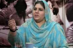 عام انتخاب میں کامیاب ہوکر حلقہ کے مسائل حل کروں گی، مہرین انور راجہ