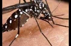 ڈینگی مچھر سے بچائو کیلئے گندے پانی کے جوہڑوں اور واسا کے ڈسپوزل سٹیشنوں ..