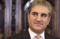 وزیراعلیٰ پنجاب کی نامزدگی عمران خان کی صوابدید ہے، شاہ محمود قریشی