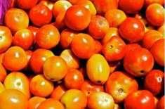 چار سو روپے کے ٹماٹروں کی خاطر ایک شخص نے جان دے دی