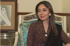 پیپلزپارٹی کی رکن سندھ اسمبلی شرمیلافاروقی بیٹے کی ماں بن گئیں