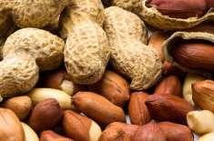 سعودی سکولوں میں مونگ پھلی سے بنی مصنوعات کی فروخت پر پابندی عائد