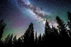 ہماری زمین پر درختوں کی تعداد زیادہ ہے یا ہماری کہکشاں میں ستارے؟
