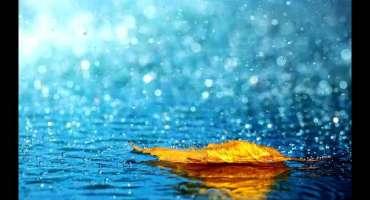 ْٹنڈومحمدخان و گردونواح میں تیز بارش کے باعث شہر میں پانی جمع ،شہریوں ..
