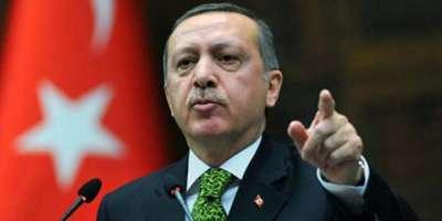 طیب اردگان کا ترکی پر عائد اقتصادی پابندیوں کے جواب میں امریکی مصنوعات ..