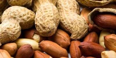 چین کی جانب سے مونگ پھلی کی خرید، سینیگال میں مقامی کاروباری سرگرمیاں ..