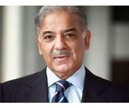 شہبا زشر یف کی سر براہی میں پار لیمانی بورڈ نے لاہور کی خواتین کے صوبائی ..